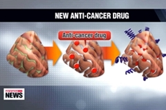 Korean scientists develop nano substance that targets cancer cells